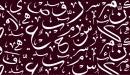 تطور اللغة العربية