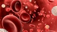 مكونات الدم ووظائفها