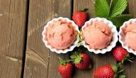 طريقة عمل المثلجات في المنزل