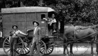 وسائل النقل قديماً