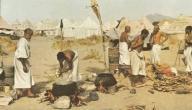 بحث حول مظاهر الحياة العقلية في العصر الجاهلي