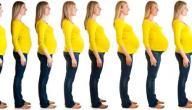 مراحل الحمل من الشهر الأول إلى التاسع