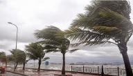 قوة الرياح