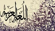 وسائل تدريس اللغة العربية
