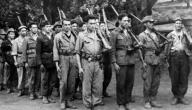 بحث عن الثورة الجزائرية