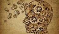 ذاكرة الإنسان