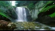صوت المياه