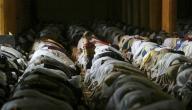 ما أثر الصلاة على حياة المسلم