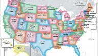 عدد الولايات في أمريكا