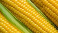 فوائد الذرة الشامية