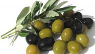 فوائد الزيتون الأسود للرجيم