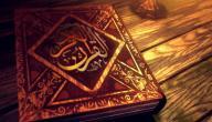 كم عدد السور في القرآن الكريم