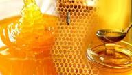 طريقة معرفة العسل الأصلي
