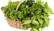 علاج اكتئاب ما بعد الولادة بالأعشاب