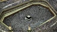 عدد مسلمي العالم