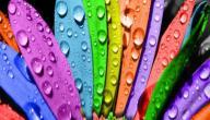 تعرف على شخصيتك من خلال لونك المفضل