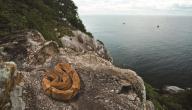 جزيرة الثعابين في البرازيل