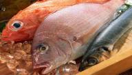 أكلات السمك بأنواعه