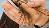 التخلص من تقصف الشعر
