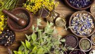 أسرع طريقة لإنقاص الوزن بالأعشاب