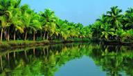 أفضل الأماكن السياحية في الهند