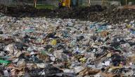 أضرار التلوث على البيئة