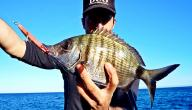 أفضل أوقات الصيد