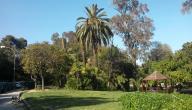الطبيعة في تونس