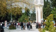 عدد جامعات المملكة الأردنية