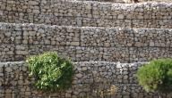 حماية التربة من الانجراف