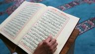 كم عدد سجدات التلاوة في القرآن