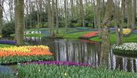 اكبر حديقة في العالم