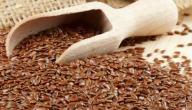 فوائد وأضرار بذر الكتان