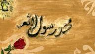 ما هي صفات الرسول صلى الله عليه وسلم