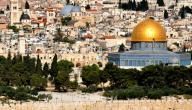أكبر مدينة في فلسطين