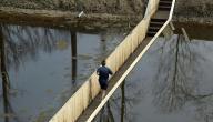 جسر موسى