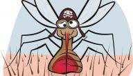 أعراض مرض الملاريا