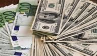 الفرق بين اليورو والدولار