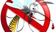 الوقاية من الملاريا