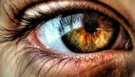 علاج ضباب العين بالأعشاب