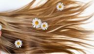 المحافظة على الشعر