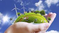 بحث عن حماية البيئة من التلوث