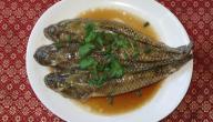 سمك الباسا الفيتنامي