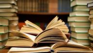 عناصر العمل الأدبي