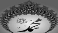 صفات سيدنا محمد عليه الصلاة والسلام