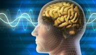 زيادة الكهرباء في الجسم
