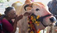 كم عدد ديانات الهند