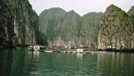 جزيرة لامو