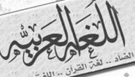 لماذا ندرس اللغة العربية