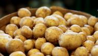 كيف احفظ البطاطس